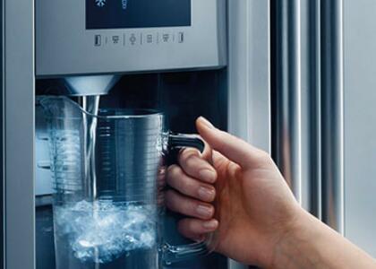 Refrigerator Filter