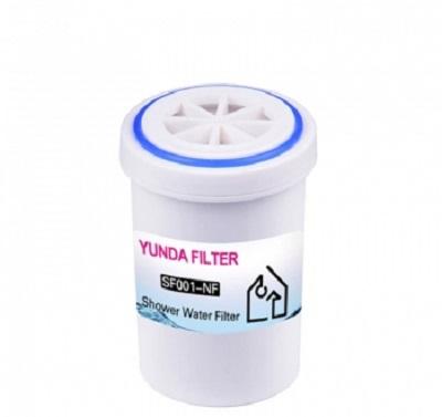 shower head purifier