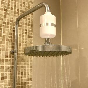 Why do You Need to Install a Shower Head Purifier?