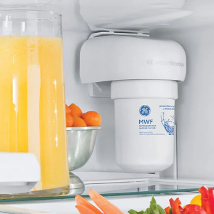 What a Refrigerator Water Filter Removes?